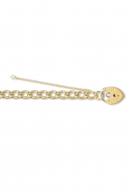 9CT YEL GOLD LADIES 7.5 INCHES CHARM BRCLT